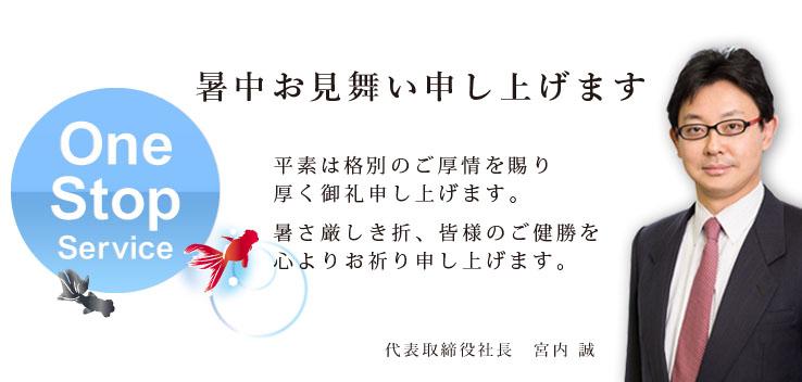 """""""決算発表"""""""